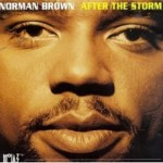 Brown-AfterTheStorm